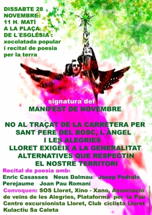 Manifest de Novembre