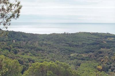 SOS Lloret protegim Costa Marcona